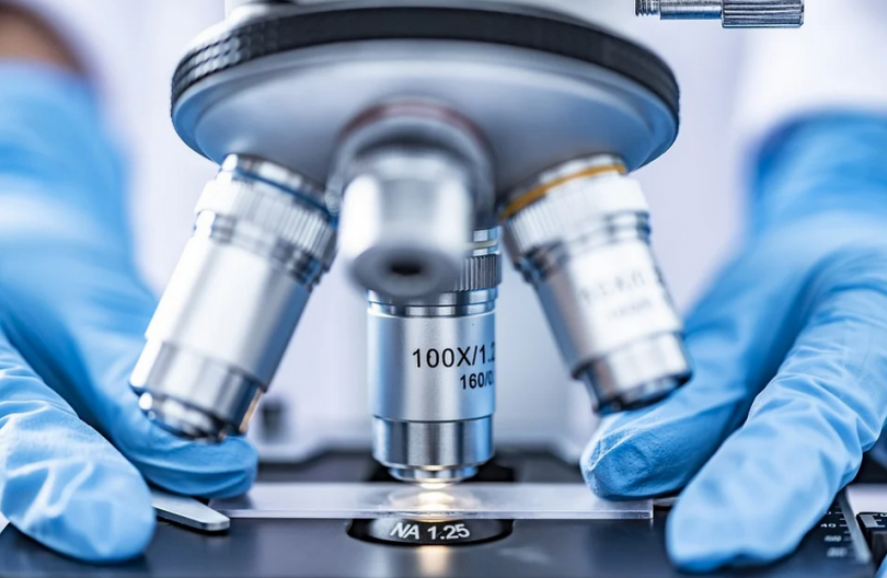 Какво представляват стволовите клетки и как могат да ни бъдат полезни?