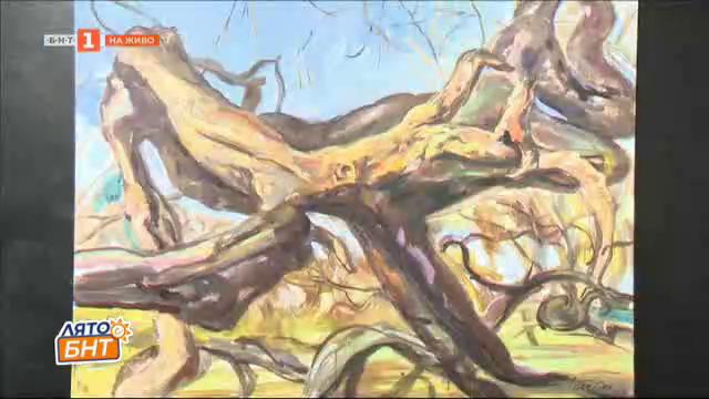 Изложбата Обезлюдена природа на художничката Тереза Зиковска