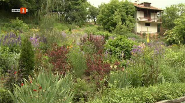 Уникална ботаническа градина на 50 км от София