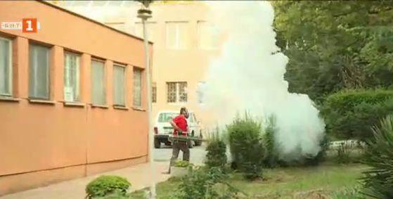Комари нападнаха Варна
