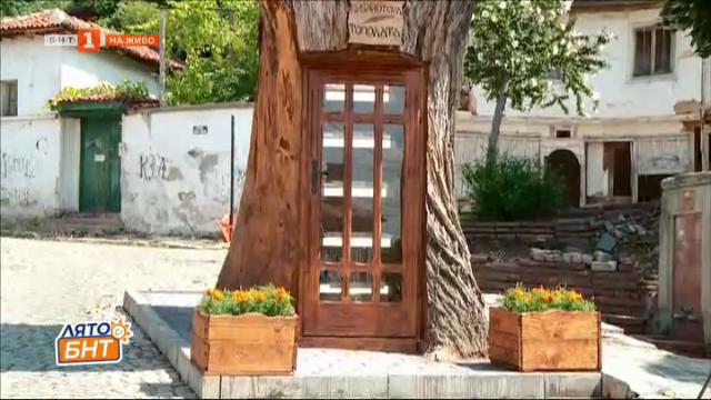Откриват библиотека в дърво топола в Сопот