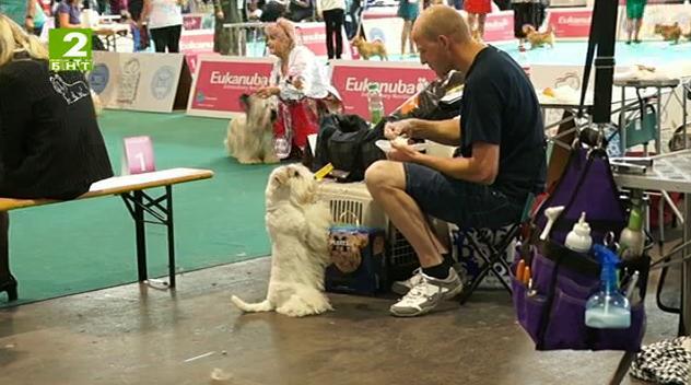 """Време за губене - 1 март 2014: Среща с една истински """"говореща с кучета"""""""