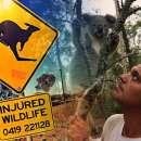 снимка 7 Дивия Франк в Австралия