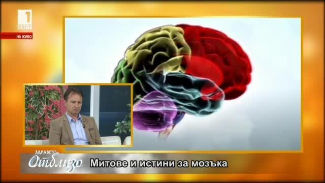 Митове и истини за мозъка. Разговор с доц. Росен Калпачки