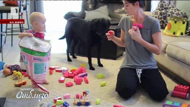 Родителските грешки през първите 7 години