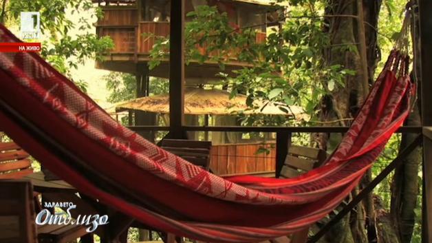 Еко селище в клоните на тропическите гори