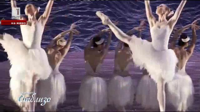 Крокодили, скорпиони или кенгуру – какво яде балетът на Австралия?