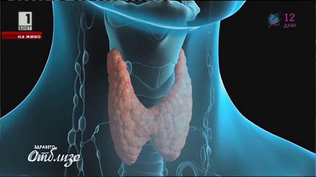Проблемите с щитовидната жлеза