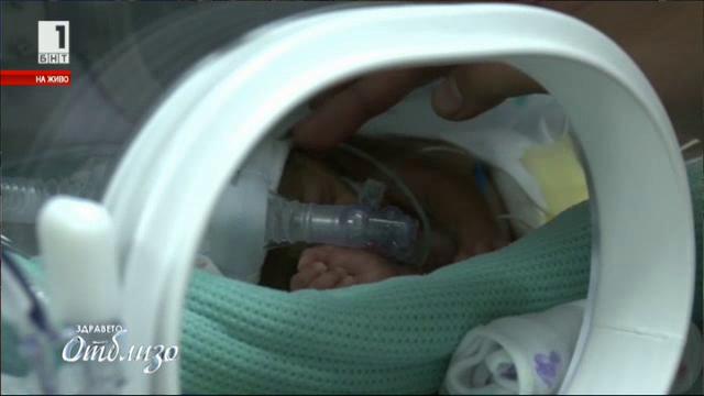 Световен ден на недоносените бебета