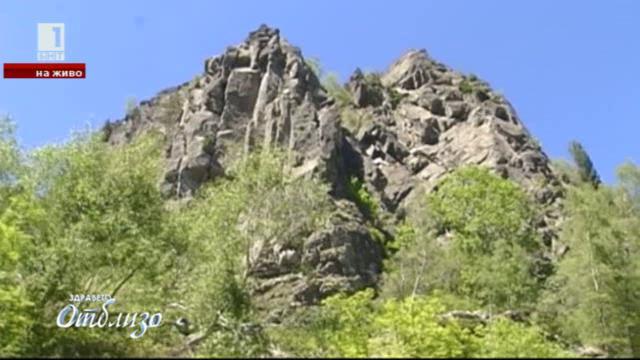 Първи стъпки в скалното катерене