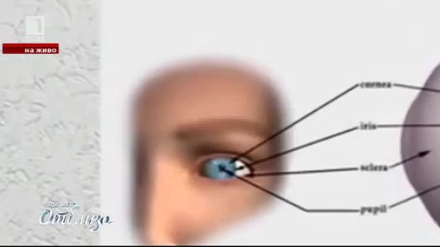 Природна аптека: Рецепти за подобряване на зрението