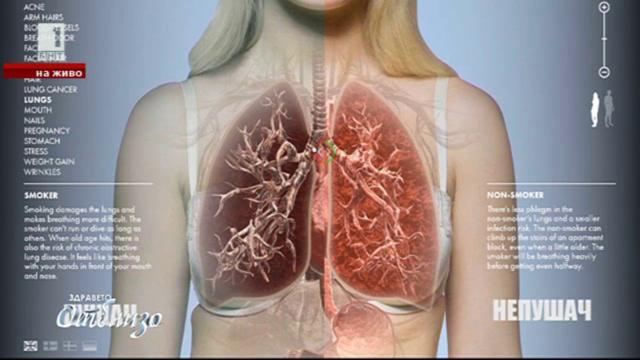 Международният ден за борба с тютюнопушенето