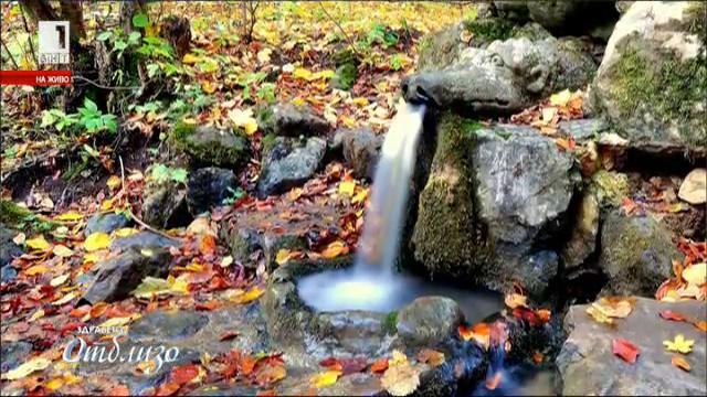 Лечебните свойства на водата