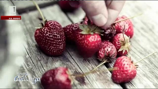 Природна аптека: Храни за добра памет