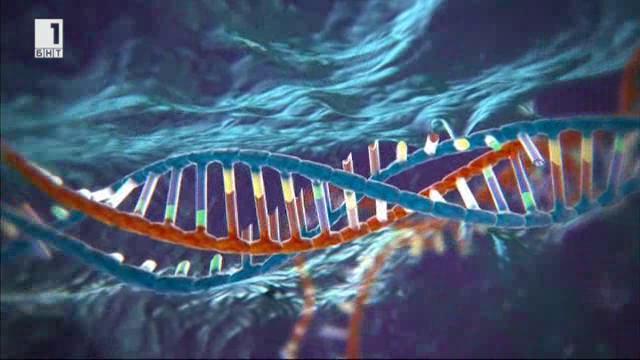Най-доброто от Здравето отблизо: Нова ера в генетиката и как може да се влияе върху човешките гени