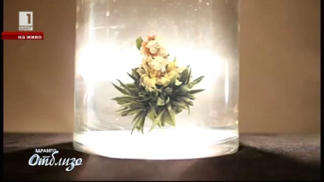 """""""Природна аптека"""" - Полезните свойства на цветовете на Хризантемата"""