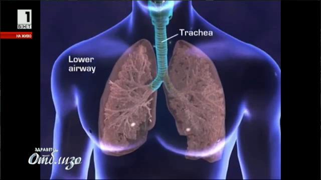 Синдромът на отровната сграда и алергиите