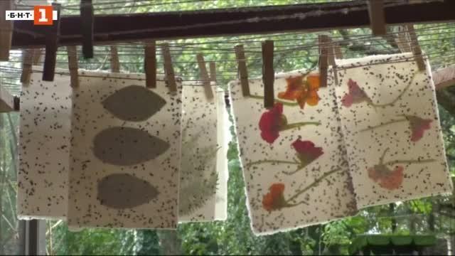 Хартия спасява пчелите
