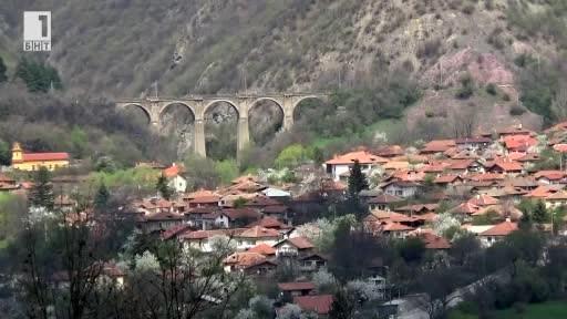 Лековитата природа на село Буново