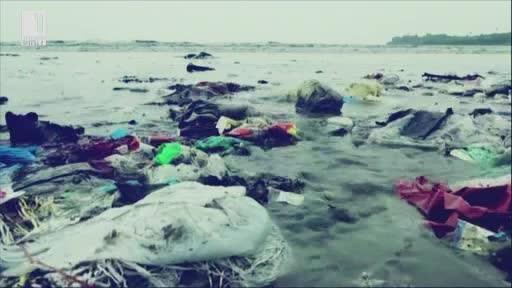 Вредата от пластмасовите микрочастици