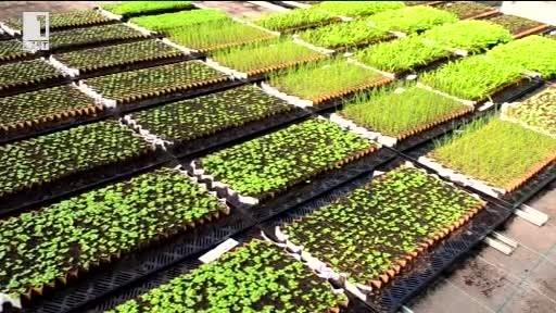 Хартиена матрица - помощ за фермера с малко стопанство