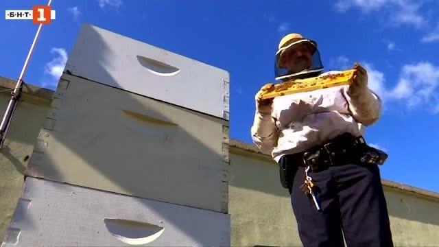 Полицейски пчелари