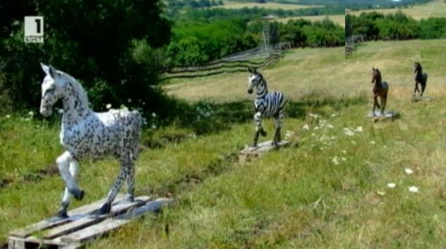Зелена светлина - 7 януари 2014: Райетата на зебрите