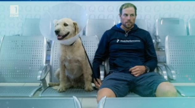 Зелена светлина - 5 декември 2014: Артур - вярното куче