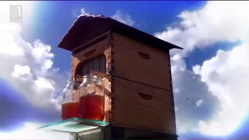 Мед направо от кошера