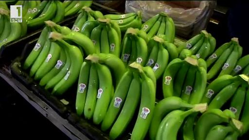 Зелена светлина - 18 декември 2013: Гъбична инфекция може да унищожи бананите