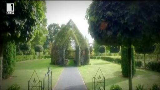 Църква от живи дървета