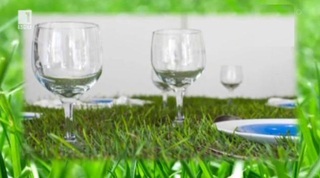 Зелена светлина – 29 май 2014: Закуска на тревата